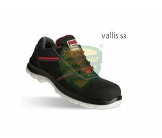 VALLIS